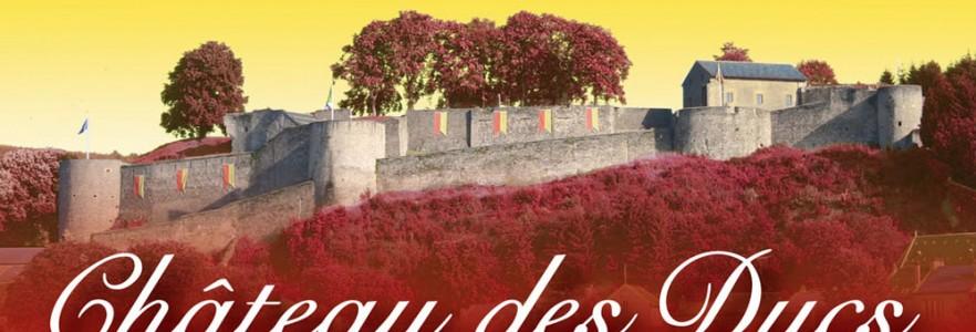 photo  Château des Ducs de Lorraine   conception de bâches et panneaux