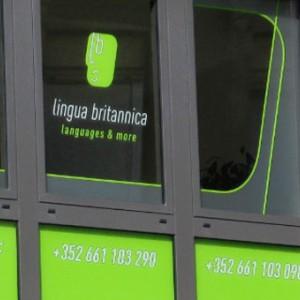 photo  Lingua Britannica   conception du  site internet  pour un organisme de formation en langues vivantes basé à Esch sur Alzette (Luxembourg)