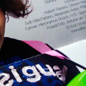 photo  Laurent James - Guitariste   conception du book de fin de formation au MAI de Nancy